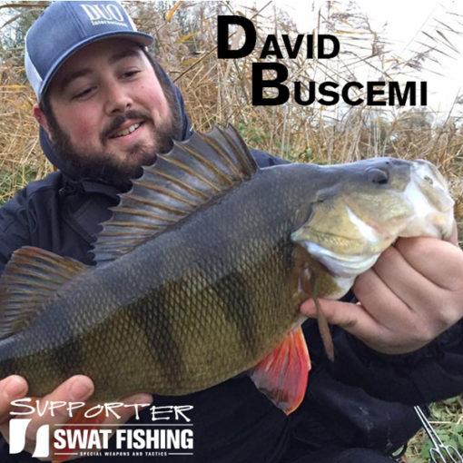David Buscemi